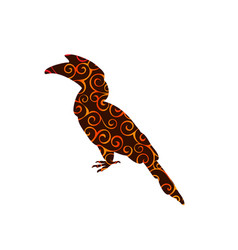 Hornbill bird spiral pattern color silhouette vector