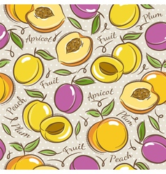 Pattern with apricot plum and peach vector image