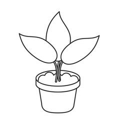 Pot plant garden concept thin line vector