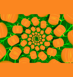ripe pumpkin on a green background vector image
