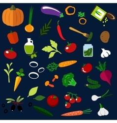 Natural ripe vegetables flat icons vector image vector image