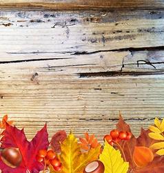 Autumn border with wood vector