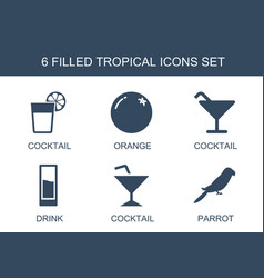 6 tropical icons vector