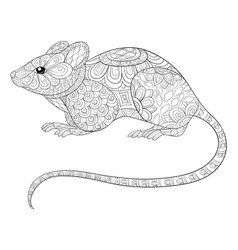 adult coloring bookpage a cute rat with ornaments vector image
