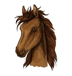 Brown proud horse artistic portrait vector