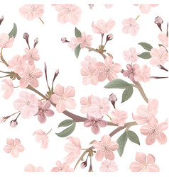 Floral seamless pattern cherry or sakura flowers vector