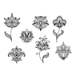 Persian paisley flowers and blossoms vector