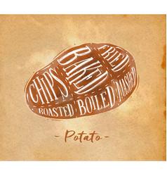 Potato cutting scheme craft vector