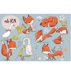 set with cute fox and farm birds vector image