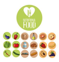 nutritional food ingredients product diet vector image