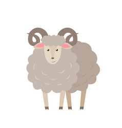 sheep flat isolated on white vector image vector image