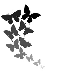 Background with a border butterflies flying vector
