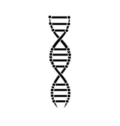 dna spiral icon design for biology science and vector image