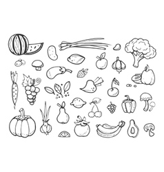 Fresh vegetables and fruit doodle icons vector image