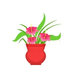 Home Hibiscus Flower In The Flowerpot Flower Shop vector image