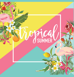 Tropical fruits flowers and flamingo birds banner vector