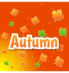 Autumn background with colored leaves vector image vector image