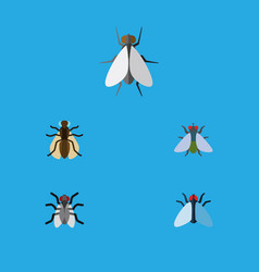Flat icon fly set of mosquito gnat hum and other vector