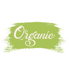hand drawn lettering organic on a paint brush vector image
