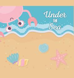 seashore sand crab starfish conch shells life vector image