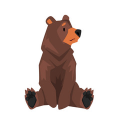 Sitting brown grizzly bear wild animal character vector