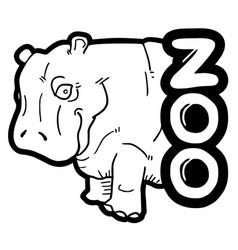 zoo hippopotamus vector image