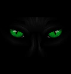 green eyes black Panther on dark vector image