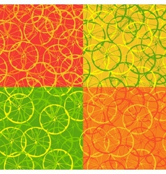 Seamless pattern of citrus fruit vector image vector image