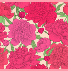 beautiful seamless background pink peonies with vector image