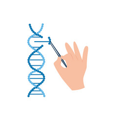 Dna research in biotechnology scientist hand vector