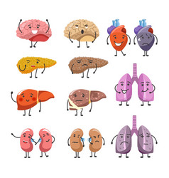 Healthy and thick organs with faces and limbs vector