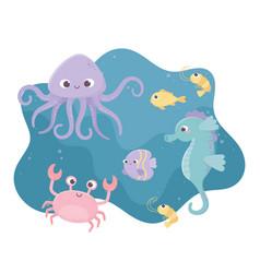shrimp seahorse crab fishes octopus life cartoon vector image