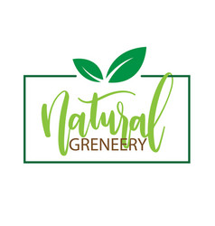 natural greneery sapling frame white background ve vector image
