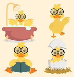Cute baby duck collection set vector