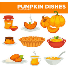Delicious pumpkin dishes for main course and vector