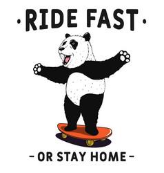 Panda rides on skateboard vector