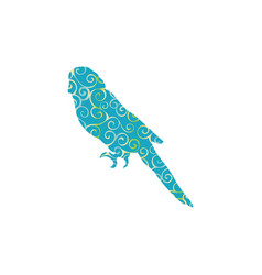 Parrot budgerigar bird spiral pattern color vector