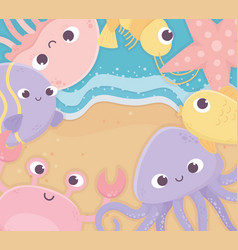 sand octopus starfish fishes jellyfish life vector image