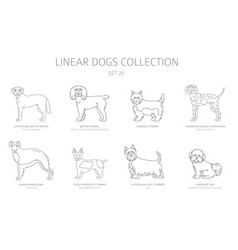 Simple line dogs collection isolated on white dog vector