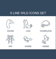 6 wild icons vector