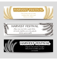 Agriculture horizontal banner set with wheat vector