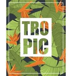 Banana leaf template vector