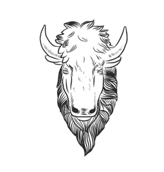Bison Mascot Head vector image