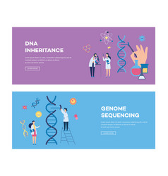 dna inheritance and genome sequencing vector image