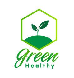 Green healthy sapling hexagon frame white vector