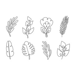 Leaf line art vector