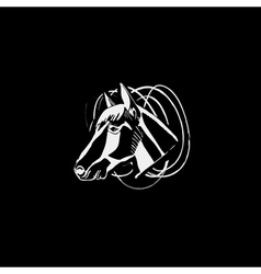 Logotype emblem sign symbol insignia of horse head vector image