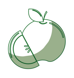 Silhouette delicious apple fruit with one slice vector
