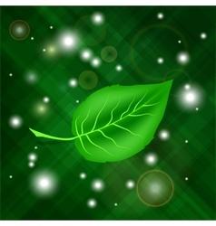 Spring green leaf vector