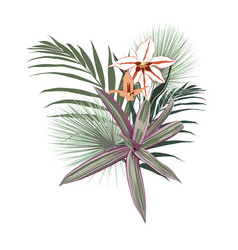 tropical flowers palm leaves jungle leaf vector image